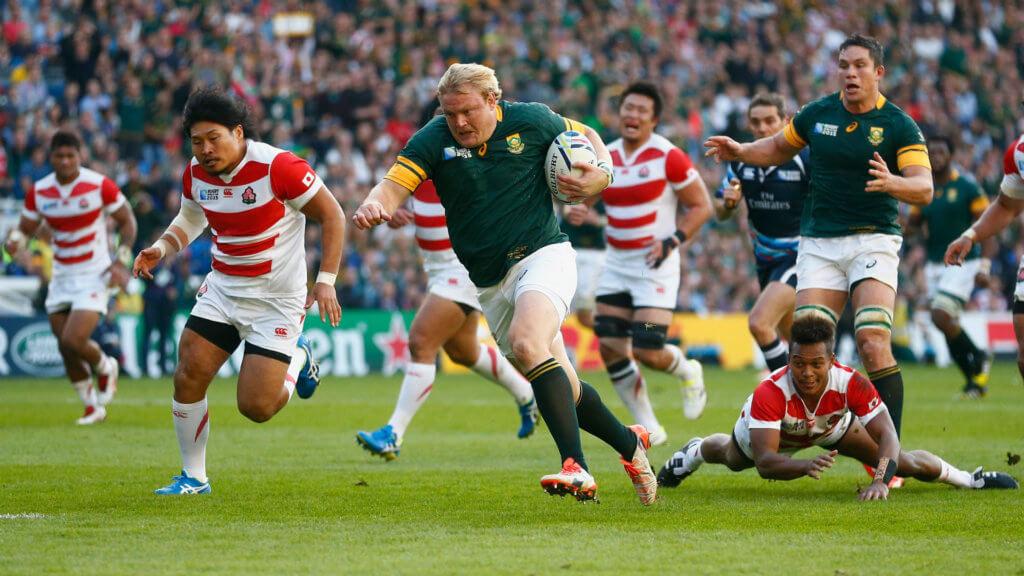 Strauss open to Springboks return