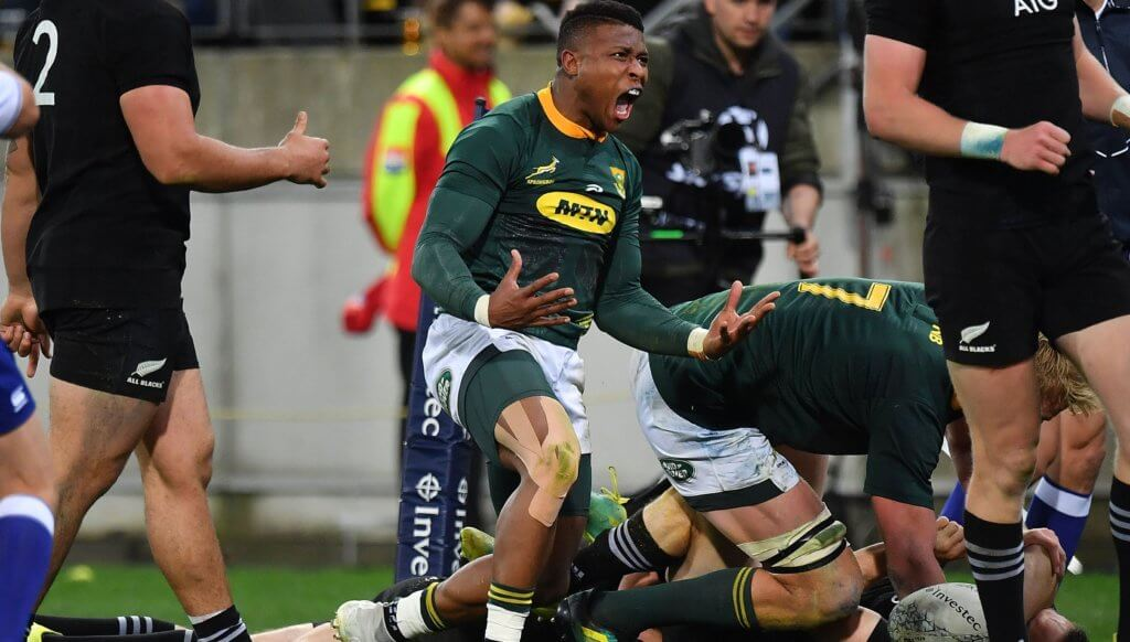 Raving about the Boks, both on attack and defence
