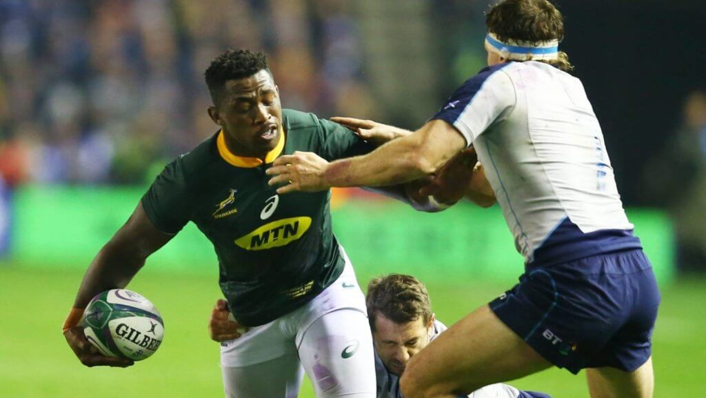 Kolisi escapes sanction for alleged headbutt