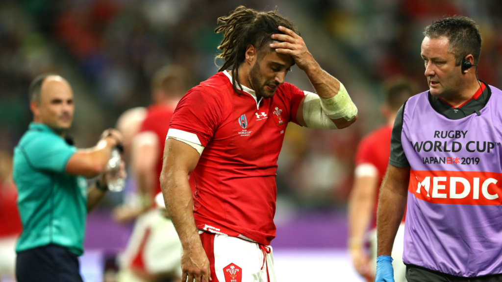 Rugby World Cup 2019: Wales lose Navidi to hamstring injury