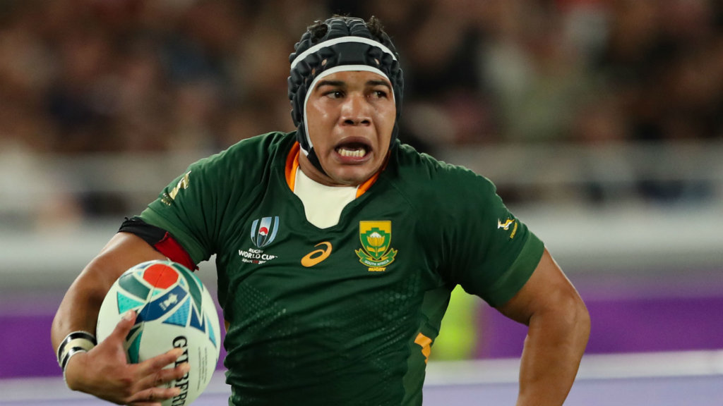 Rugby World Cup 2019: South Africa stars lead the way in Player of the Year nominations
