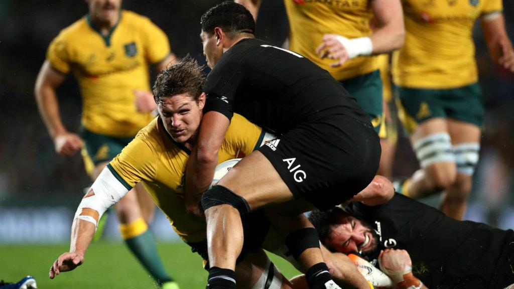 Coronavirus: Australia could host Rugby Championship hub