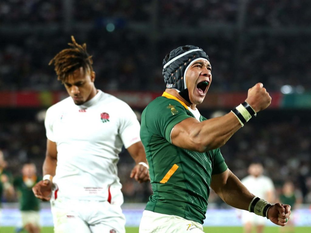 Why you can be bullish about the world champion Springboks