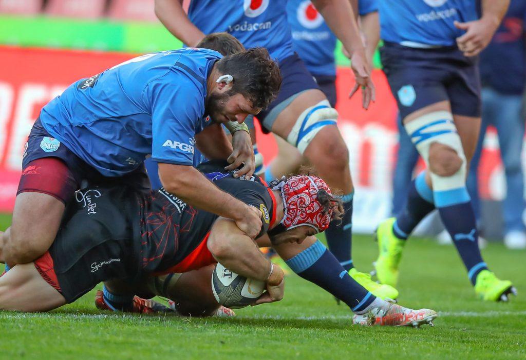 Bulls & Lions SA's best provincial bet against touring Lions